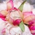 [結婚指輪][婚約指輪][マリッジリング][エタニティリング][高松人気]