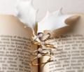 [結婚指輪][婚約指輪][クリスマスプロポーズ][プロポーズリング]