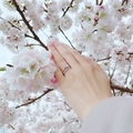 [SAKURA][結婚指輪][婚約指輪][ブライダルリング][高松]