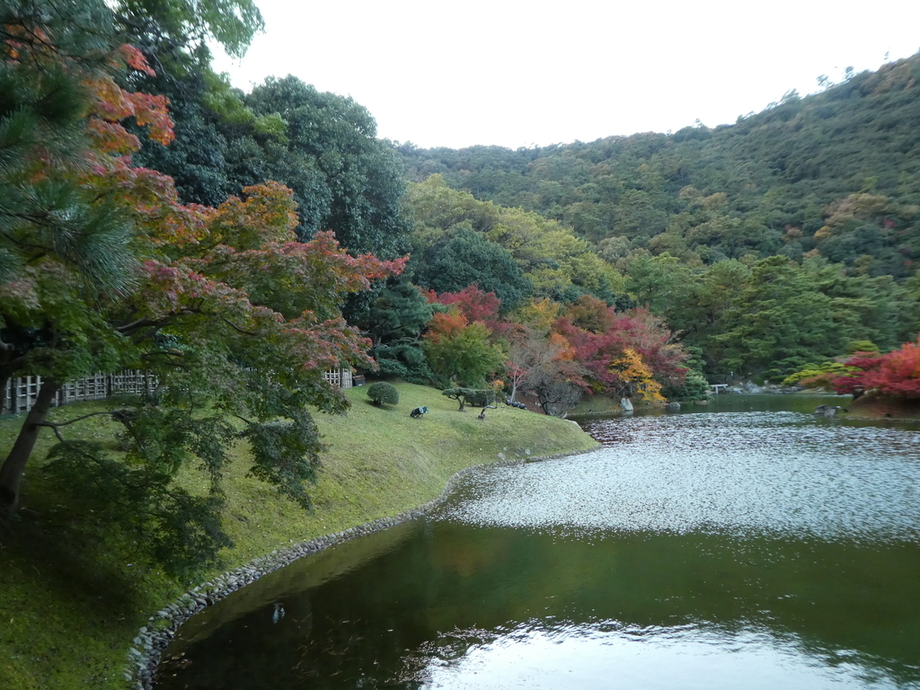 f:id:takamatsugohan:20181123191955j:plain