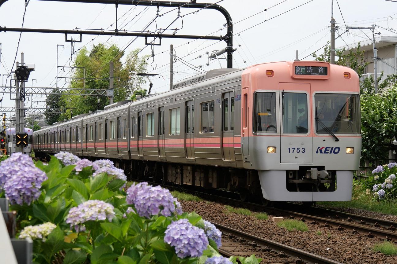 f:id:takamatsutomonori:20180527225418j:plain