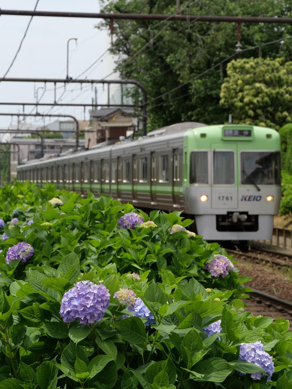 f:id:takamatsutomonori:20180527225425j:plain