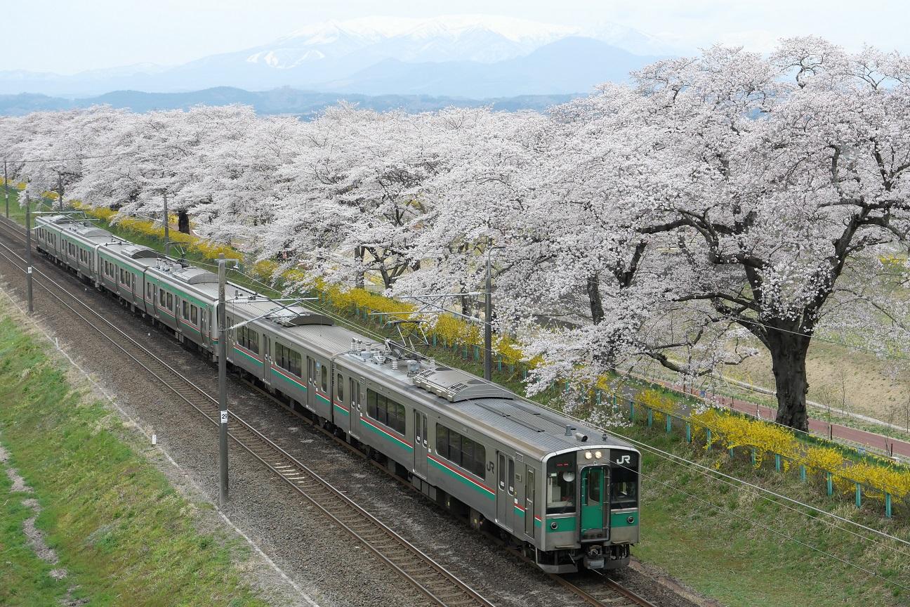 f:id:takamatsutomonori:20190413215221j:plain