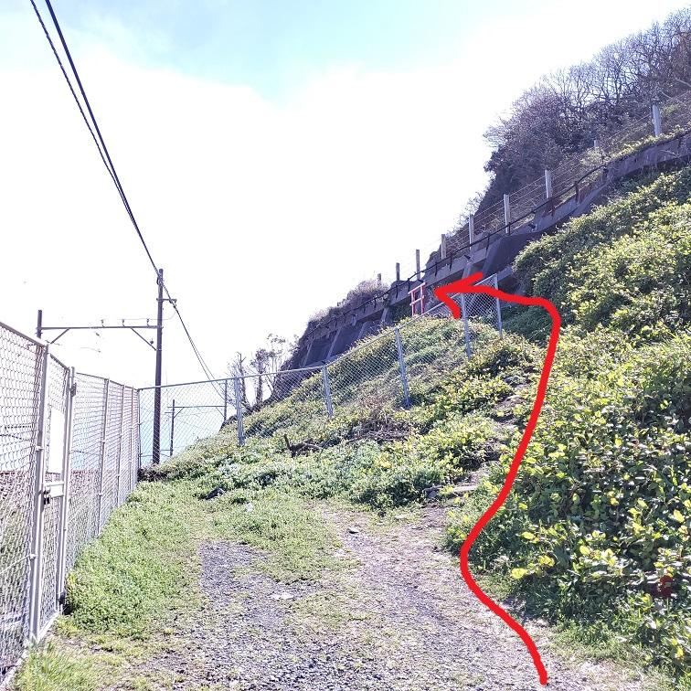 f:id:takamatsutomonori:20200316233018j:plain