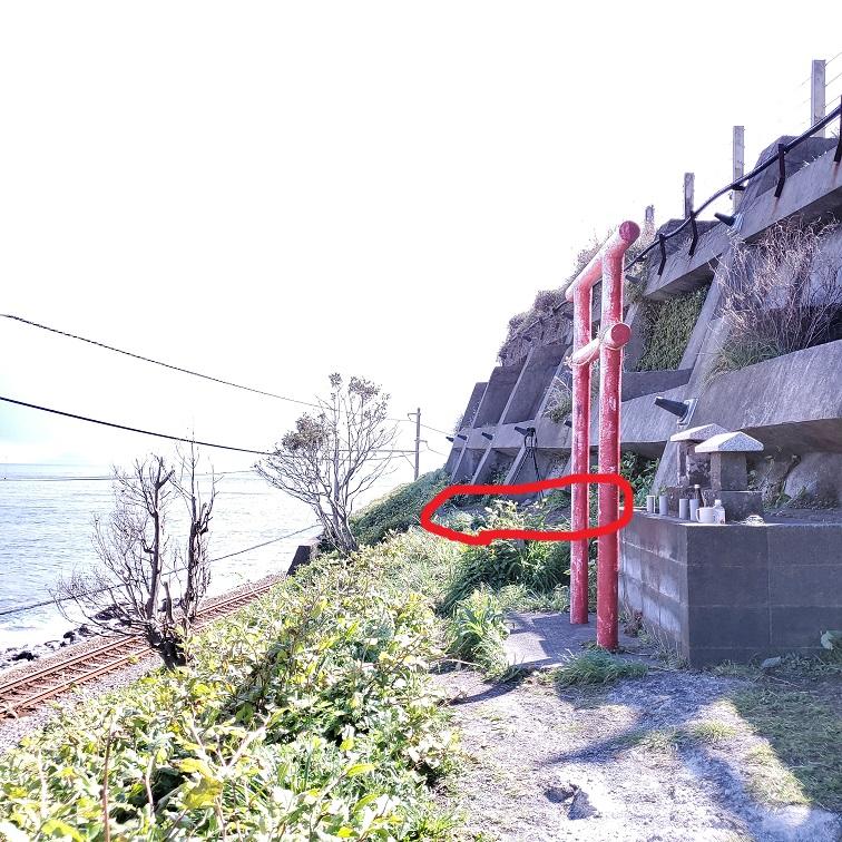 f:id:takamatsutomonori:20200316233023j:plain