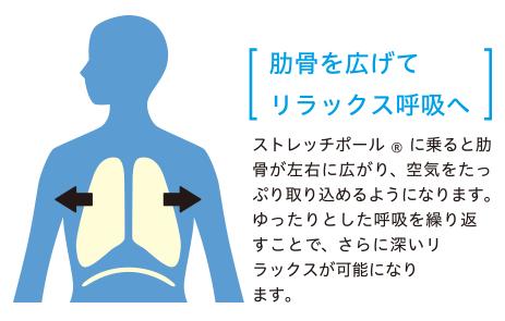 f:id:takami1073:20180429064629p:plain