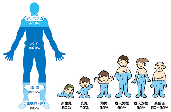 f:id:takami1073:20180625064449p:plain