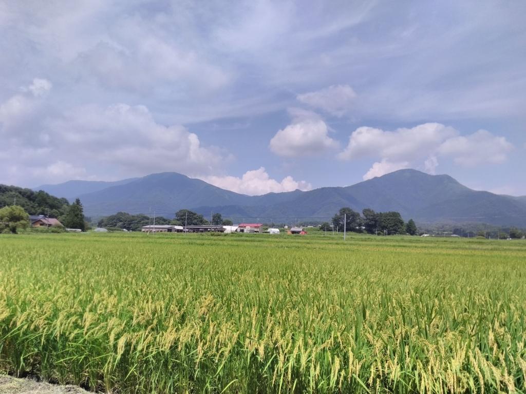 f:id:takamiaoi:20170822161930j:plain