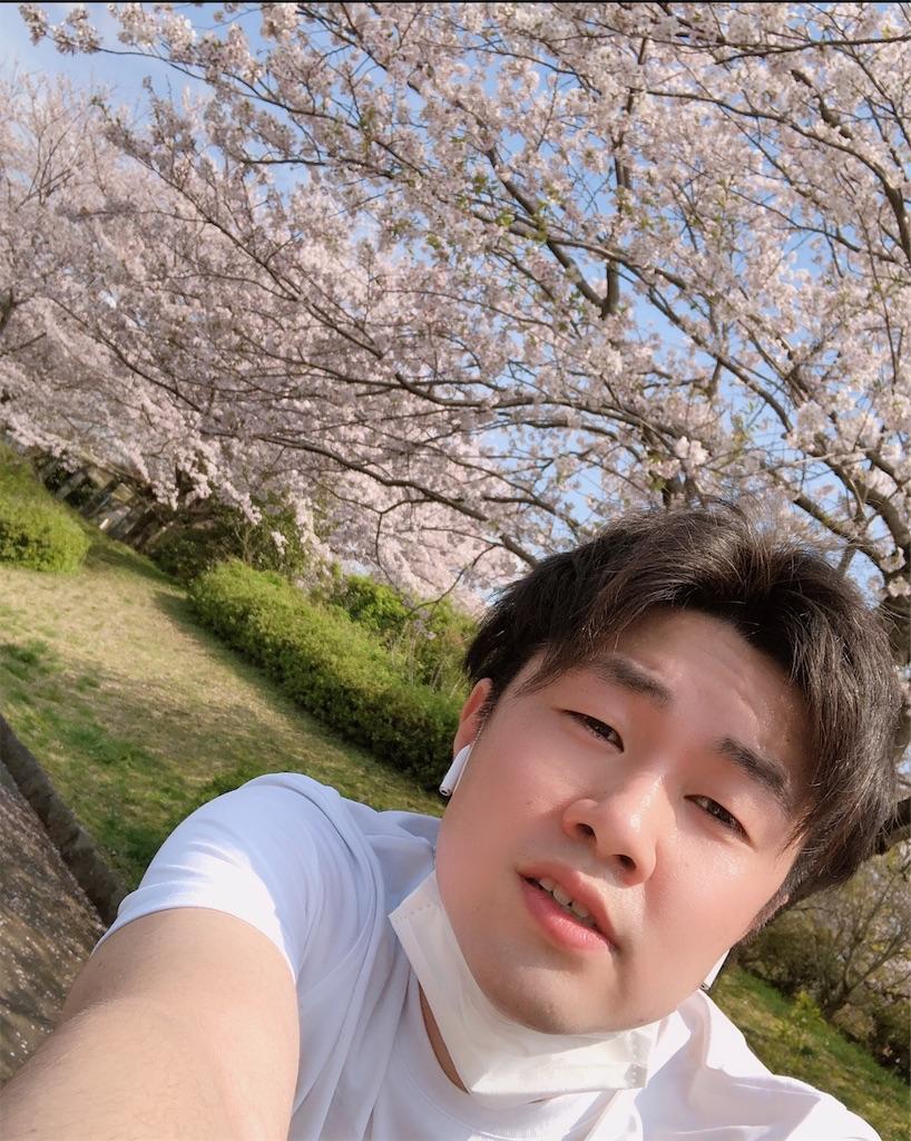 f:id:takamurablog:20200404013715j:image