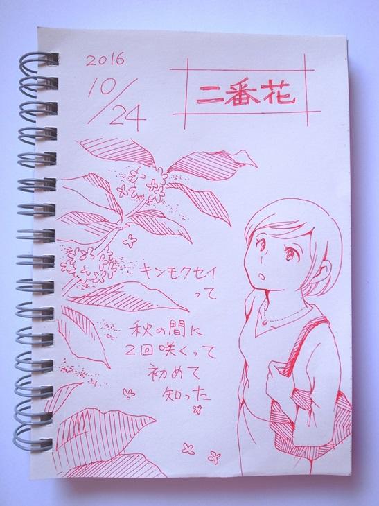 f:id:takanimayumi:20161024163415j:plain