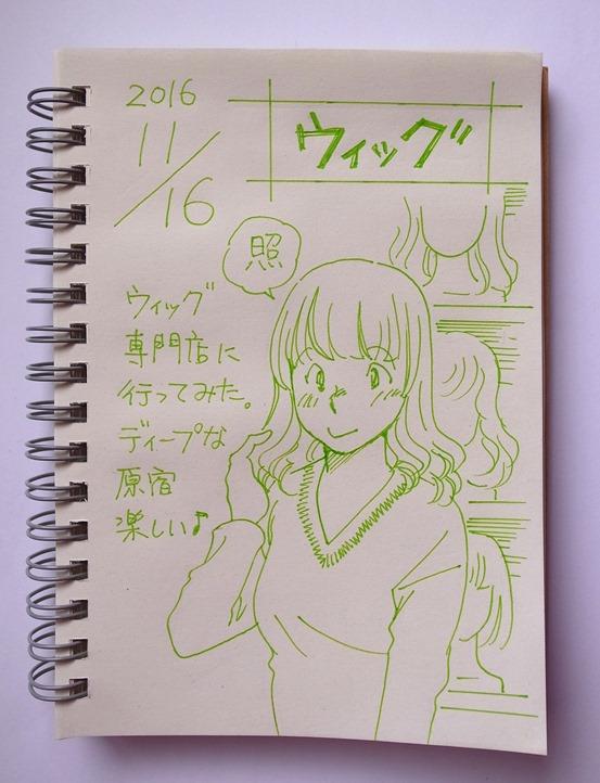 f:id:takanimayumi:20161116120412j:plain