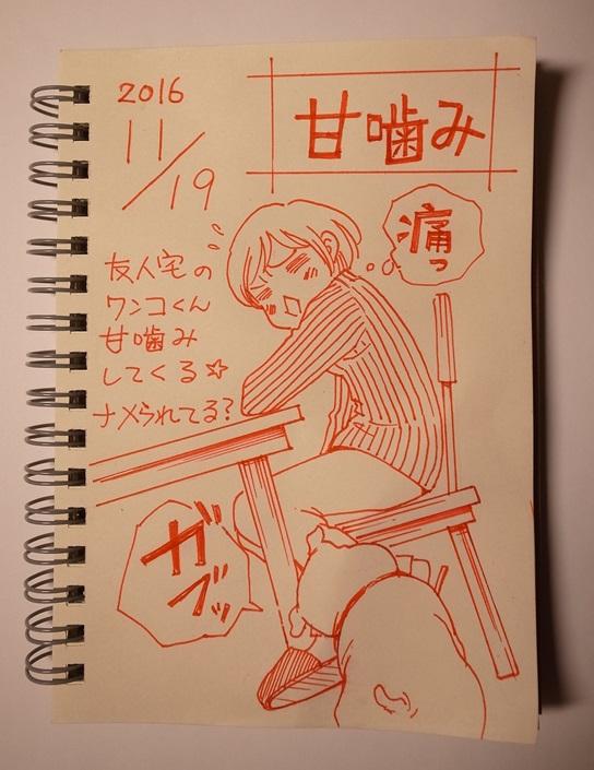 f:id:takanimayumi:20161119205515j:plain