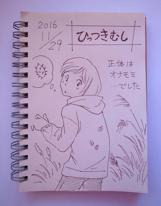 f:id:takanimayumi:20161129114533j:plain