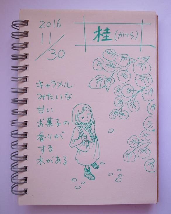 f:id:takanimayumi:20161130102406j:plain