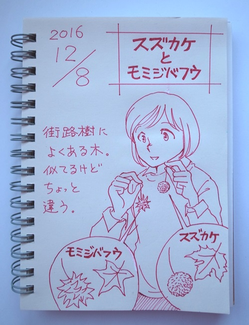 f:id:takanimayumi:20161208071830j:plain