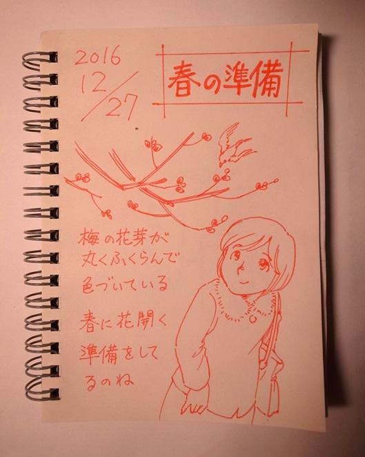 f:id:takanimayumi:20161227163130j:plain