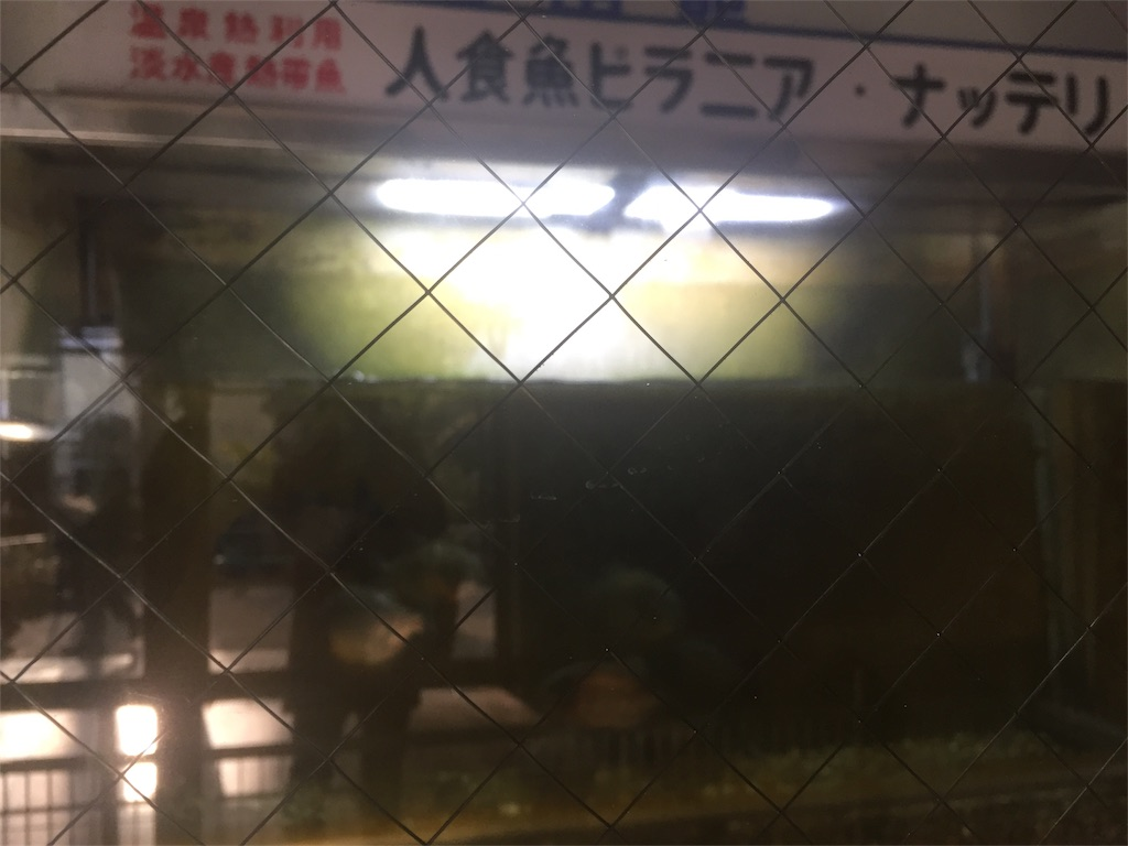 f:id:takanori5:20180211074654j:image