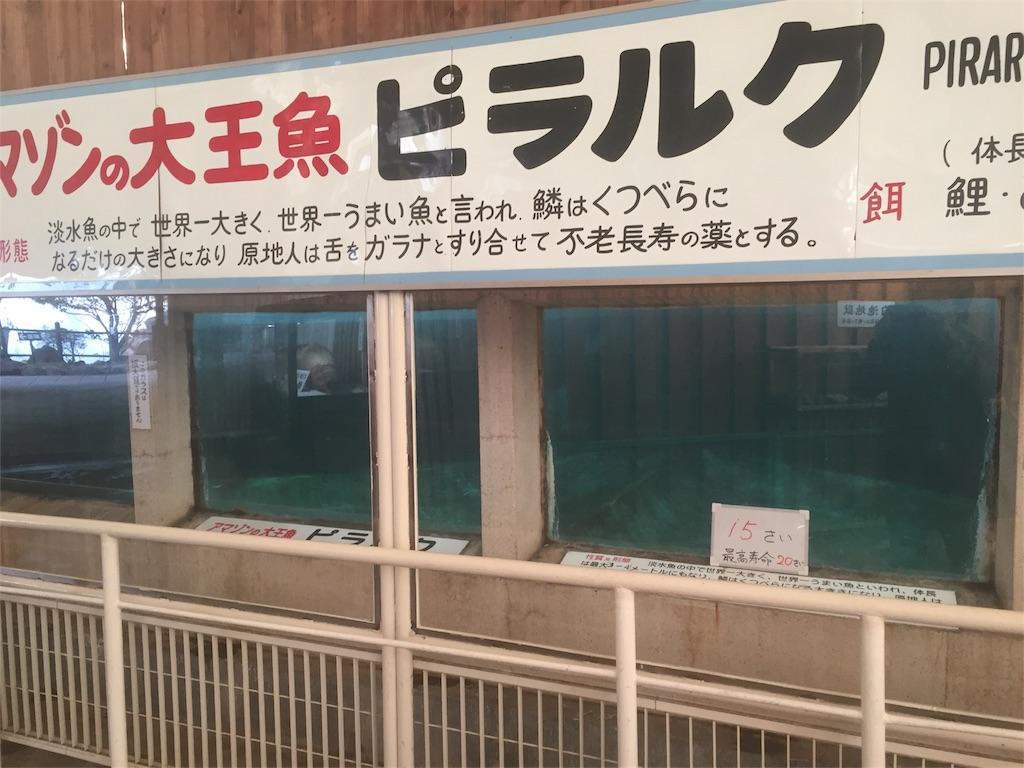 f:id:takanori5:20180211074816j:image
