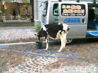 f:id:takaochan:20070504174700j:image