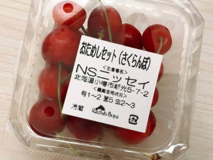 f:id:takara55:20190802172326j:plain