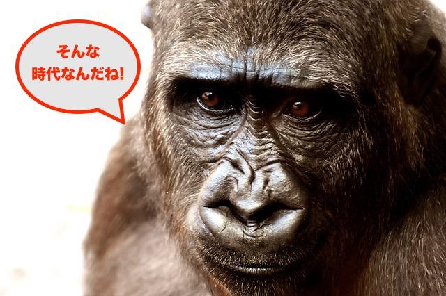 f:id:takarabakosagashi:20170607210122j:plain