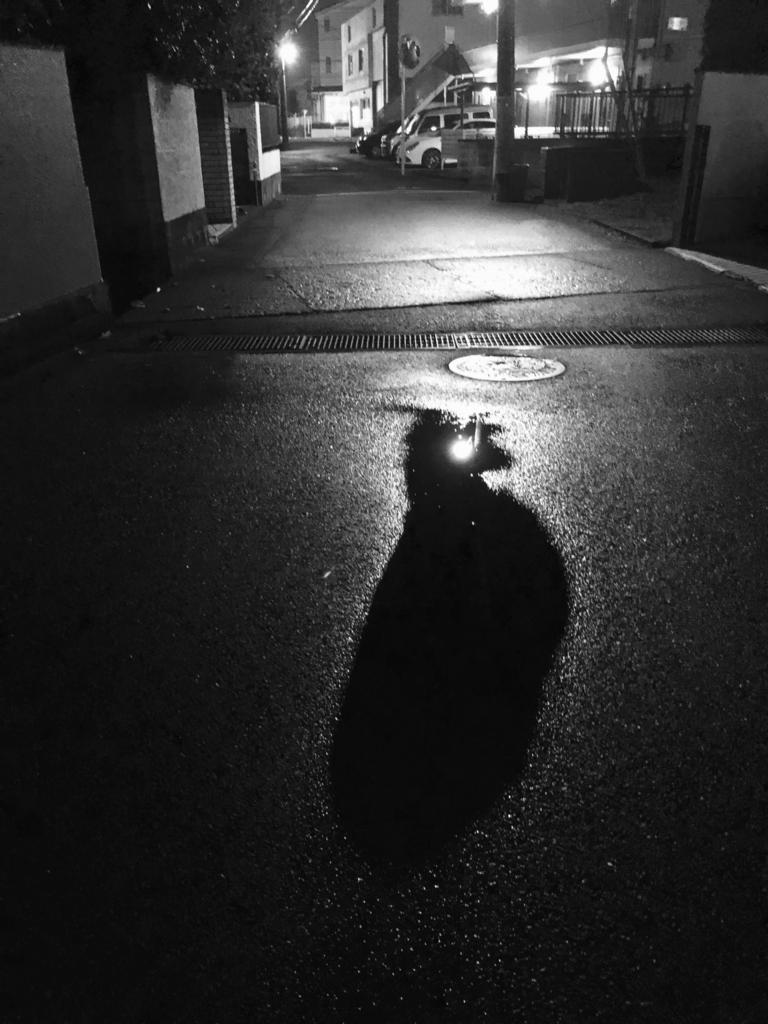 f:id:takarabito:20171113224338j:plain