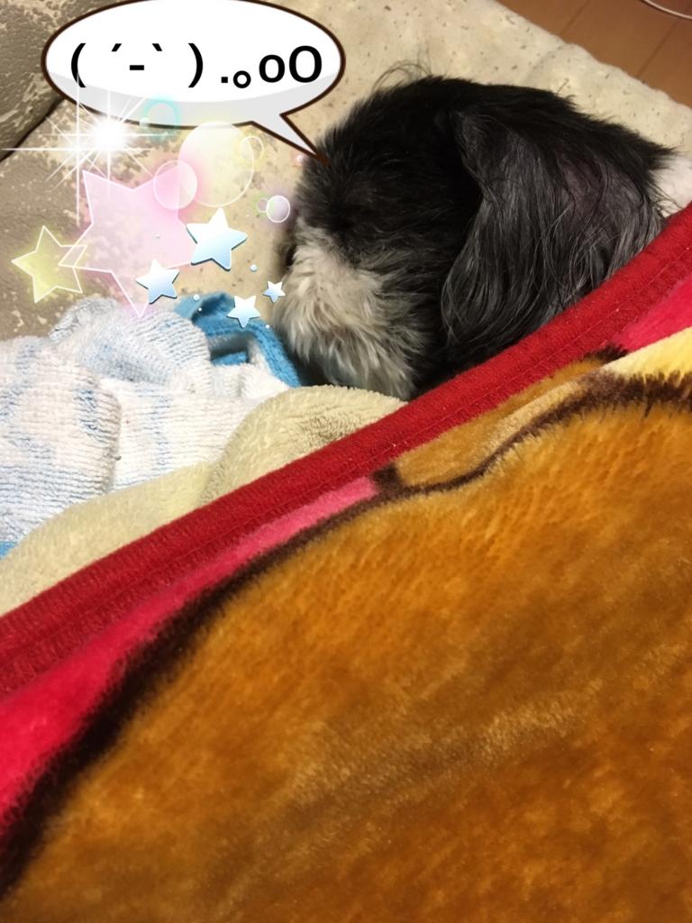 f:id:takasayayuki:20161218222613j:plain