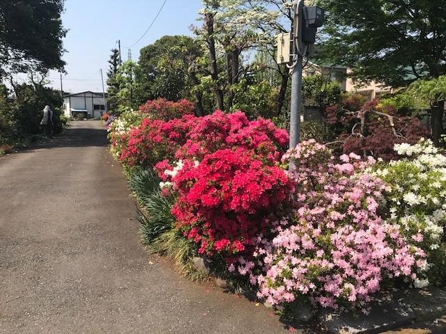 f:id:takase22:20180420102715j:image:w360