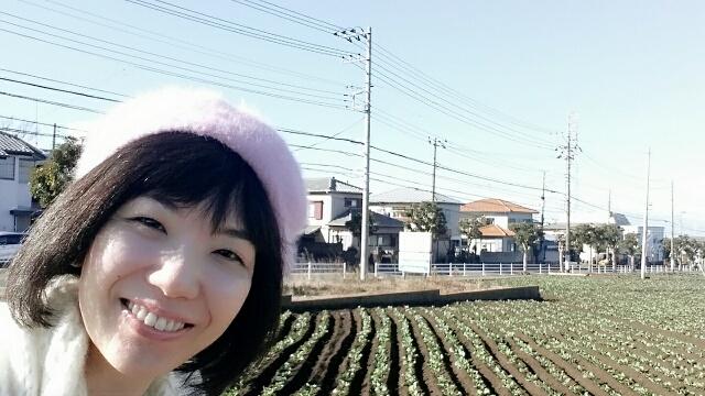 f:id:takasemariko:20170101155634j:plain