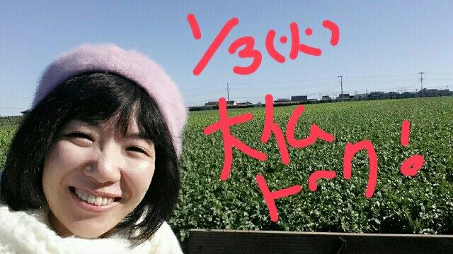 f:id:takasemariko:20170102121719j:plain