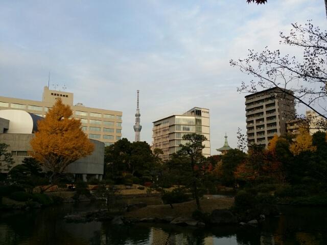 f:id:takasemariko:20171127012815j:plain