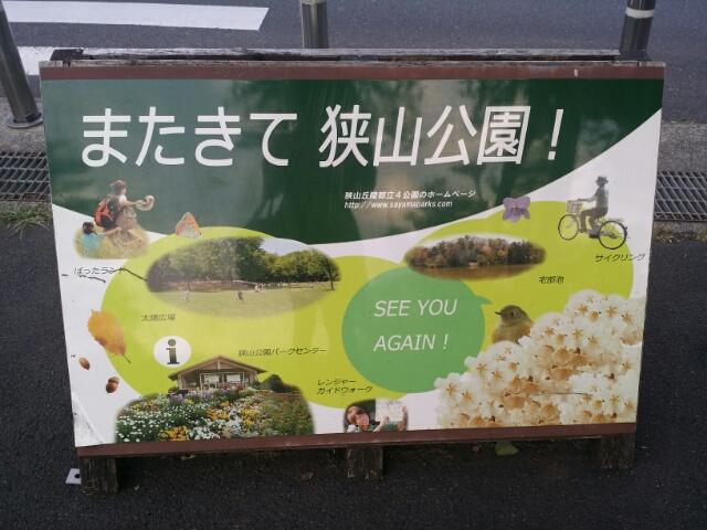 f:id:takasemariko:20180604003926j:plain