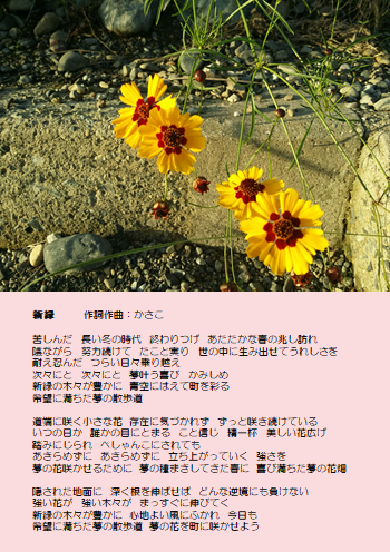 f:id:takasemariko:20180728000348p:plain