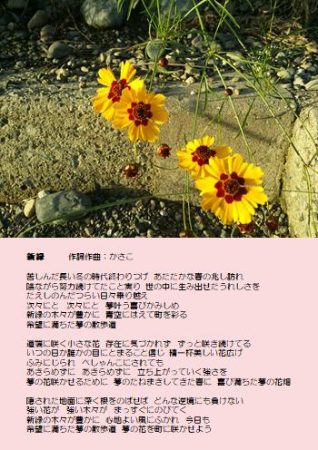 f:id:takasemariko:20180731021110p:plain
