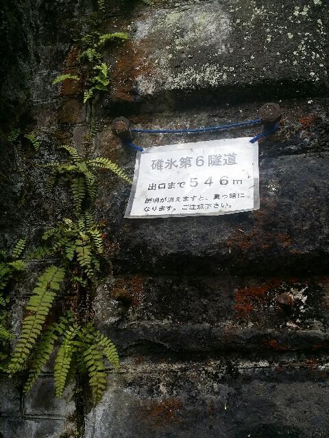 f:id:takasemariko:20190503222849j:image