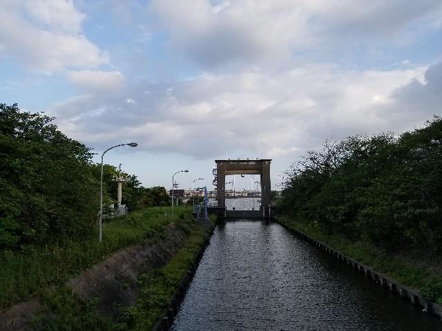 f:id:takasemariko:20190520120247j:image