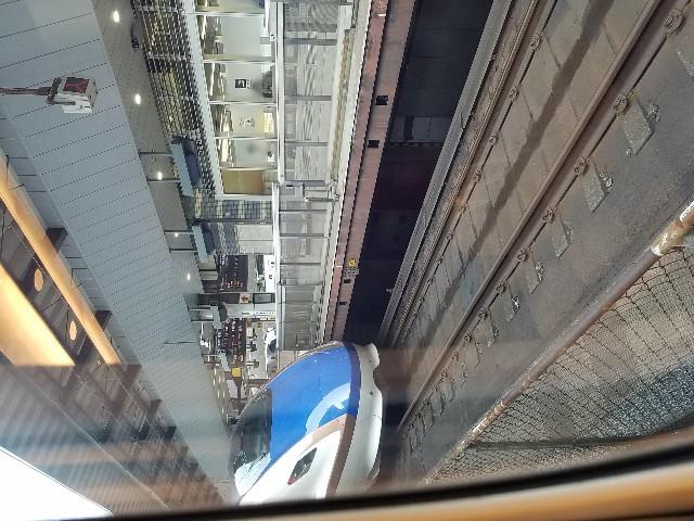 f:id:takasemariko:20190802073041j:image