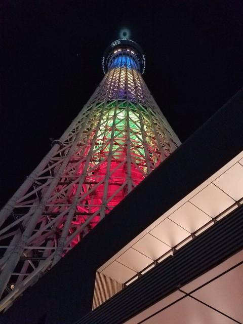 f:id:takasemariko:20190804234326j:image