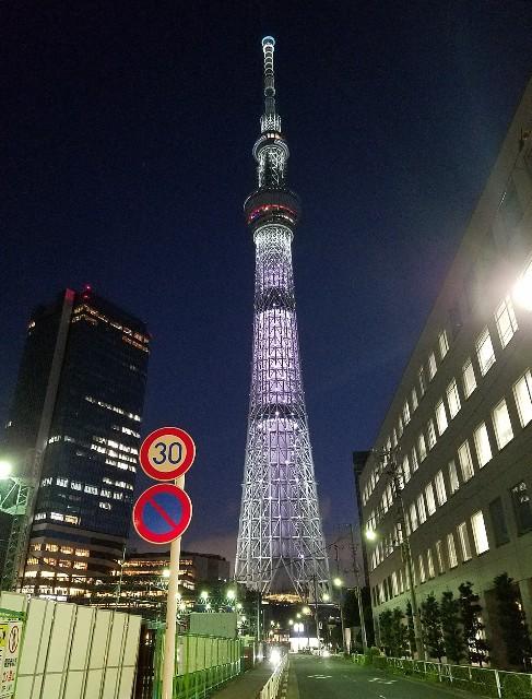 f:id:takasemariko:20190815195348j:image