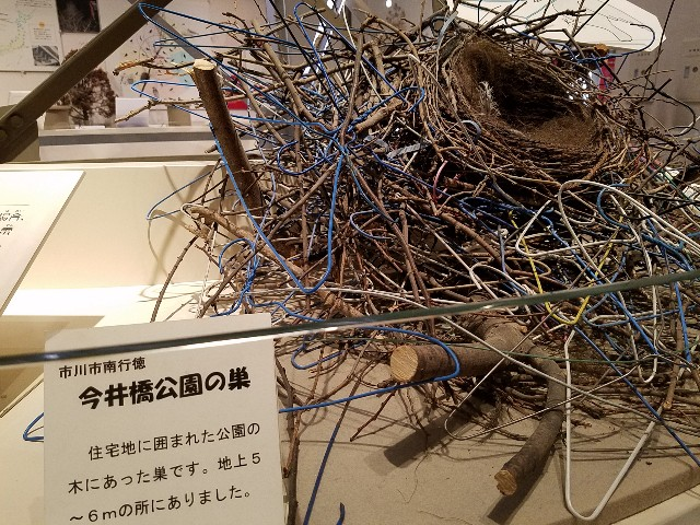 f:id:takasemariko:20191125003701j:image