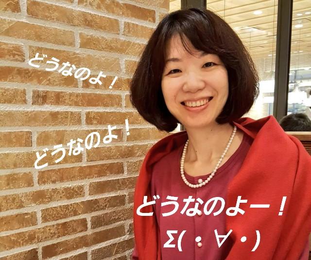 f:id:takasemariko:20200206225302j:image