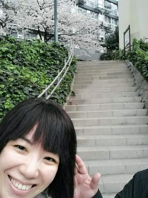 f:id:takasemariko:20200403100331j:image