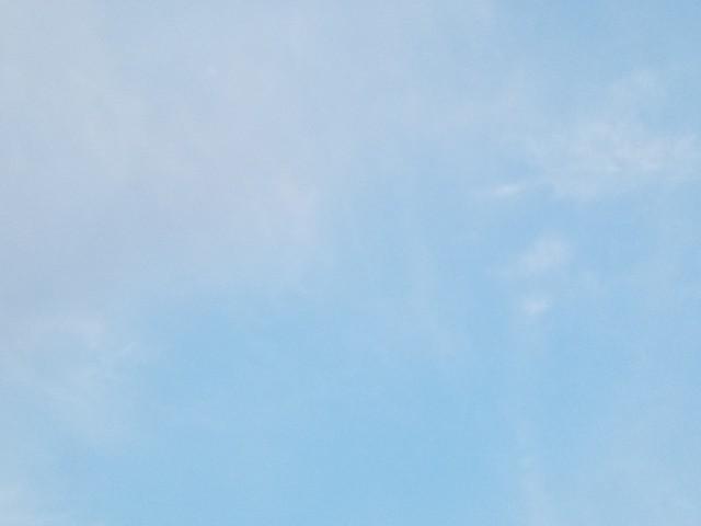 f:id:takasemariko:20200407121334j:image
