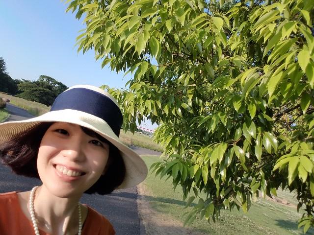 f:id:takasemariko:20200608185904j:image