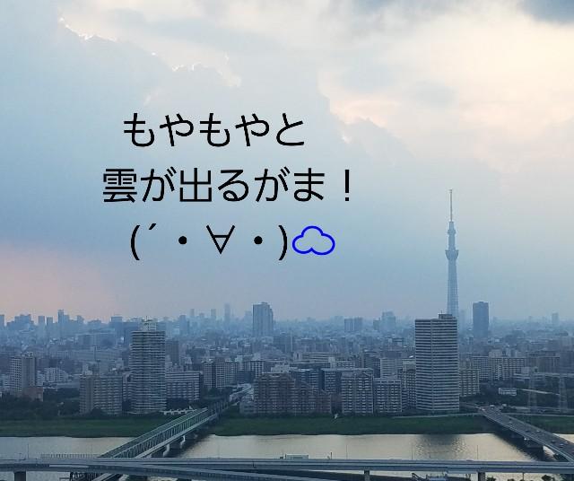 f:id:takasemariko:20200815194552j:image
