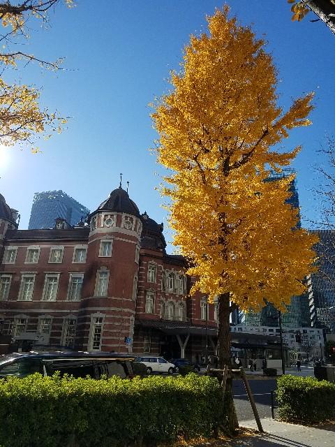 f:id:takasemariko:20201217012030j:image