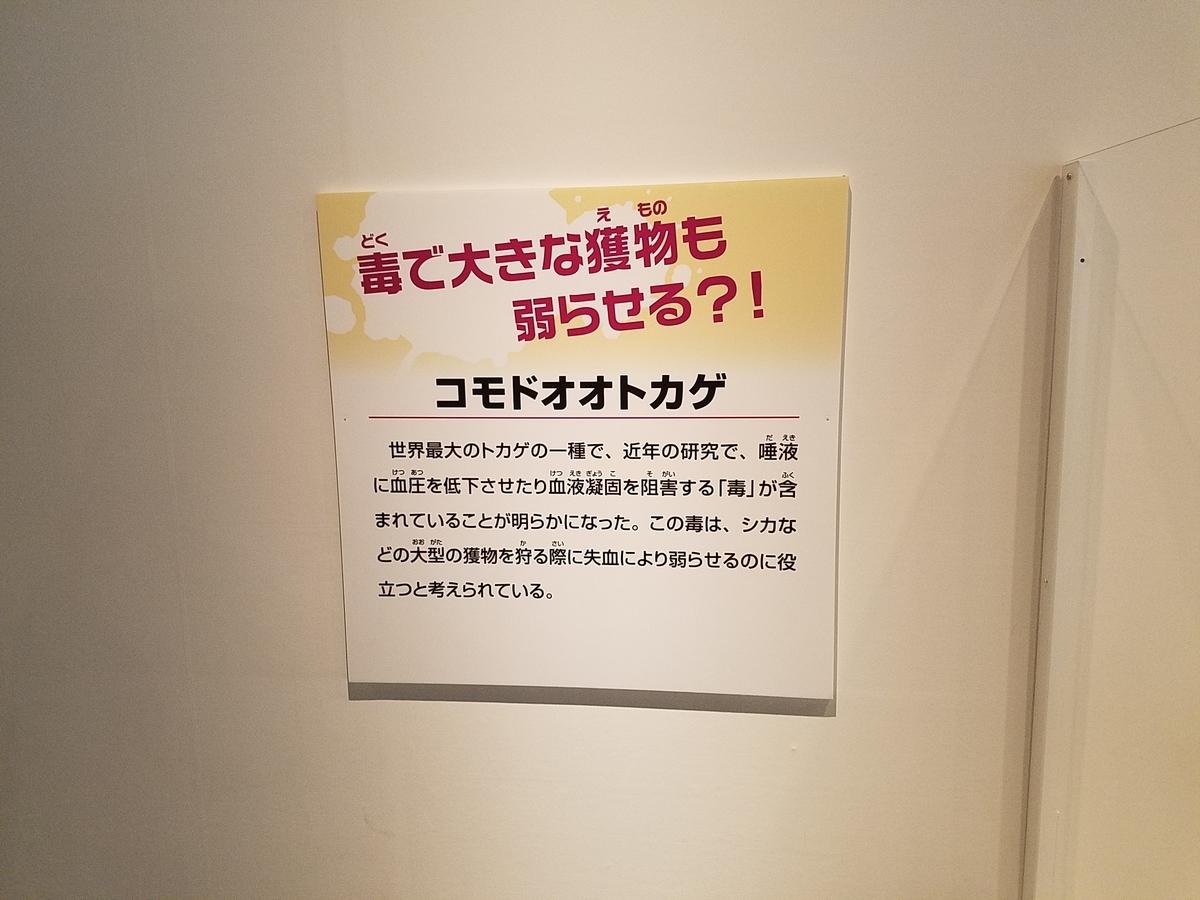 f:id:takasemariko:20210417005219j:plain