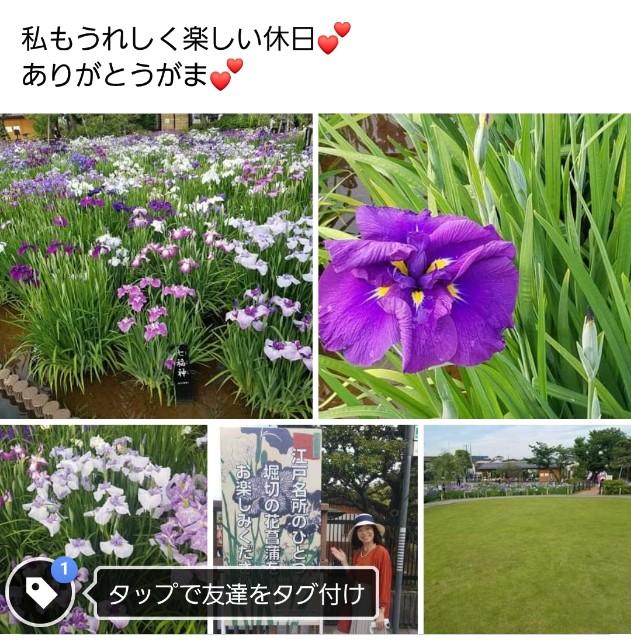 f:id:takasemariko:20210607135649j:image