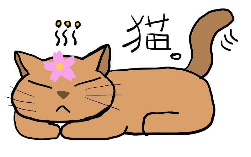 f:id:takasenarihira:20191111223147j:plain