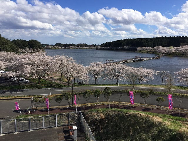 f:id:takashi-haru:20190414185732j:plain
